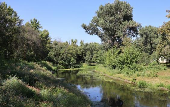 В областном центре расчищают протоки Кривец