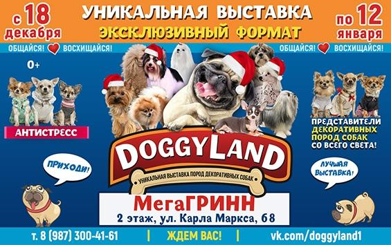 """Doggy land"""